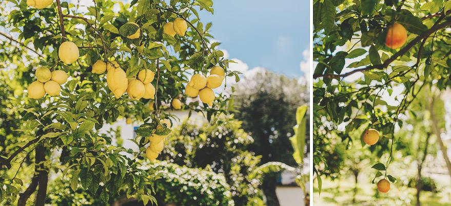 lemon grove villa antiche mura