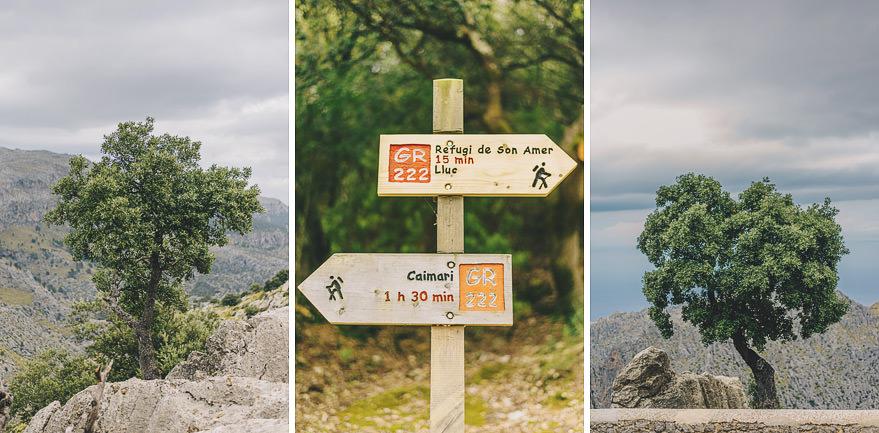 trekking in mallorca