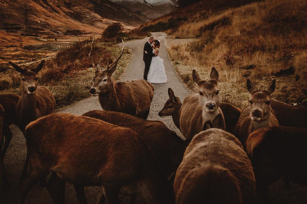 best-wedding-photos-2016041